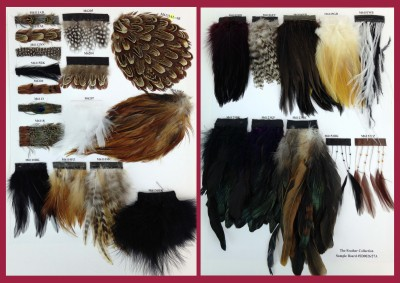 SD0026/27A Feather Collection